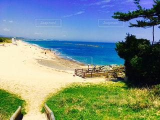 青い空青い海の写真・画像素材[979251]