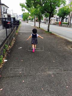 夏,散歩,少女,歩道,娘,高知市,お気に入りの道