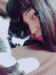 猫,白黒,ねこ,ペット,ハチワレ,ネコ,ハチワレ猫,ツーショット