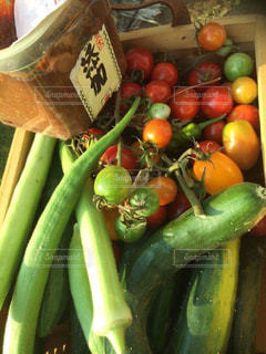 No.519608 野菜