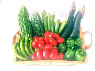 No.519651 野菜