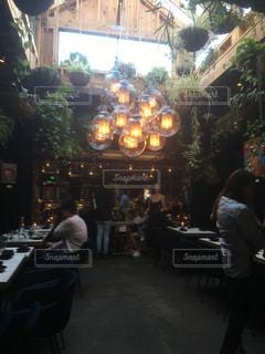 自然,インテリア,電球,ライト,レストラン,お洒落