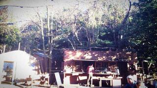 カフェ,自然,アウトドア,横須賀,野外,秋谷,syokuyabo農園,オーガニックカフェ
