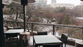 カフェ,冬,雪,東京,テラス,白金台,八芳園,スラッシュカフェ