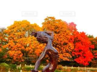 近くの木のアップの写真・画像素材[841976]
