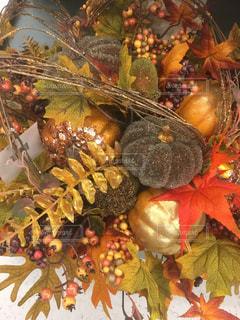 秋,紅葉,植物,フラワーアレンジメント,かぼちゃ,リース,飾り