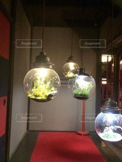 電球,電気,装飾,フラワーアレンジ,飾り