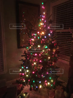 冬,イルミネーション,クリスマス,クリスマスツリー