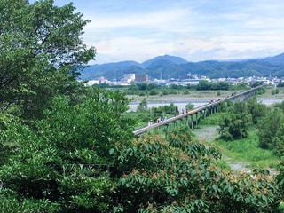 世界一長い木造の歩道橋の写真・画像素材[787372]