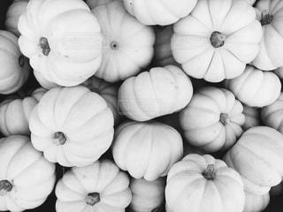 ホワイトパンプキン (白いかぼちゃ)の写真・画像素材[813513]