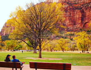 公園のベンチに座っている人の写真・画像素材[879433]