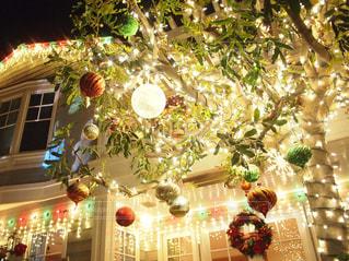 クリスマス ツリー - No.937794
