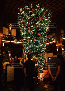冬,ビーチリゾート,アメリカ,人物,人,旅行,クリスマス,USA,America,クリスマスツリー,カリフォルニア,リゾート地,San Diego,California,サンディエゴ,カルフォルニア,複数人,コロナド,Coronado,US,SD,逆さまのツリー,ホテル デル コロナド,Hotel Del Coronado