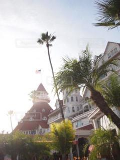 建物,海外,ビーチ,アメリカ,旅行,国旗,ヤシの木,USA,America,リゾート,海外旅行,San Diego,California,サンディエゴ,カルフォルニア,アメリカ旅行,palm tree,palm trees,アメリカ国旗,ホテル・デル・コロナド,Hotel Del Coronado