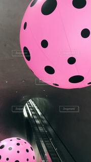 水玉模様 ピンク × ブラックの写真・画像素材[1121373]