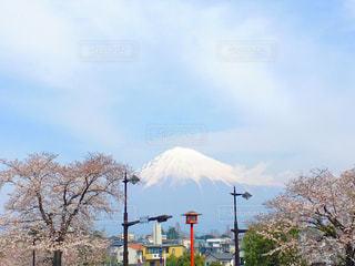2018年3月に撮影した桜と富士山 / 場所 : 富士宮 - No.1121965
