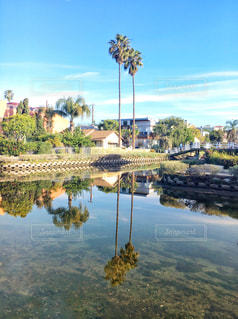 水の体の上の橋 / Venice Canals Walkway (ベニス運河) アメリカ・ロサンゼルス ロスの写真・画像素材[1222167]