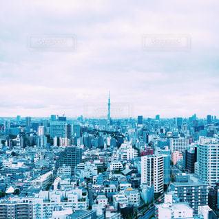 大都市の風景の写真・画像素材[1312490]