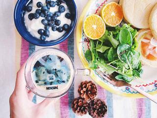 ネスカフェ フォトラテ ペット リチャードソンジリス テーブルの上に食べ物のボウルの写真・画像素材[1483069]