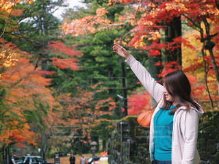 紅葉の前に立っている女性 モデル ポートレートの写真・画像素材[1608191]