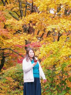 紅葉 ツリーの前に立っている人 女性 モデル ポートレートの写真・画像素材[1608463]