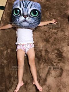 猫を持っている人の写真・画像素材[716592]