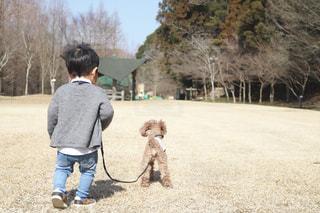公園の写真・画像素材[384637]