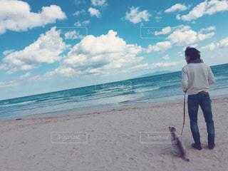 家族,犬,海,海水浴,かわいい,親子,散歩,仲良し,楽しい,幸せ,子犬,シベリアンハスキー,パパ,静岡,白浜,下田,ちっちゃい,ツーショット,ハスキー