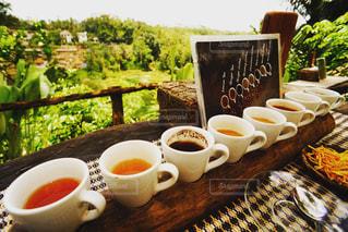 カフェ,コーヒー,COFFEE,アジア,cafe,Bali,海外旅行,インドネシア,ウブド,Travel,バリ,Indonesia,ubud,coffee plantation,コーヒープランテーション