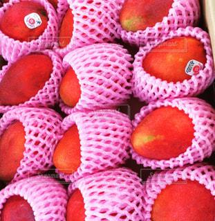 マンゴー,フルーツ,台湾,初夏,ギフト,大粒,アップルマンゴー,愛文芒果