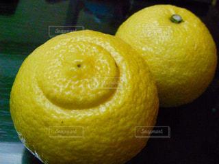 フルーツ,果実,柑橘,春香