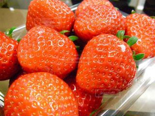 いちご,苺,フルーツ,果実