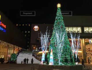 冬,光,キラキラ,クリスマス,ツリー,思い出,輝き,深川ギャザリア