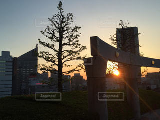 アクトシティ屋上公園からの夕焼けの写真・画像素材[966173]