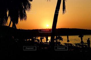 ヤシの木のビーチに沈む夕陽の写真・画像素材[966369]