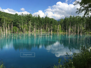 青い池に映る青い空の写真・画像素材[1097455]
