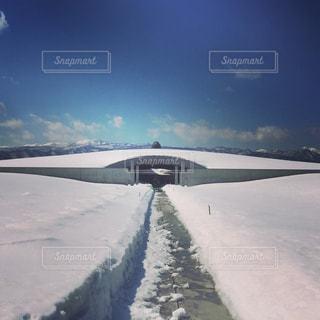 雄大な雪景色の頭大仏の写真・画像素材[1097517]