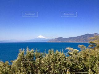 駿河湾越しの富士山の写真・画像素材[1109124]