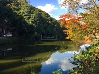池に映る青い空の写真・画像素材[1109378]