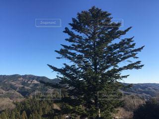 背景の山と木 - No.1109385