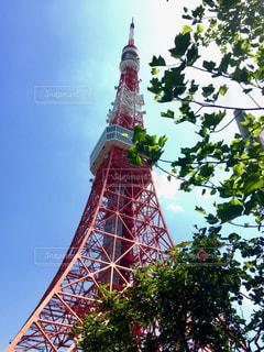 天高く東京タワーの写真・画像素材[1109396]