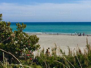 青い海、青い空の写真・画像素材[1109530]