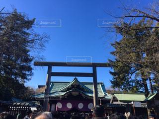 靖國神社に初詣、快晴の空!の写真・画像素材[1109582]