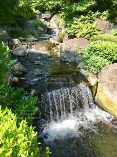 庭園内の小滝の写真・画像素材[1491170]