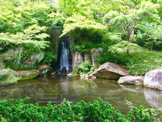 緑の中の滝の写真・画像素材[1491203]