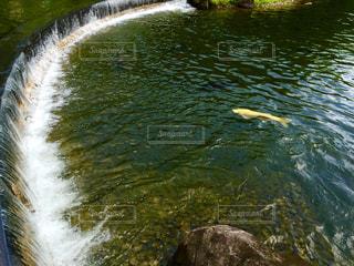 アーチ型が綺麗な公園の滝の写真・画像素材[1491442]