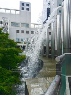 庭に放水の写真・画像素材[1491470]