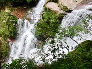 森の中の大きな滝の写真・画像素材[1491601]