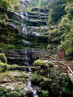 森の中の滝の写真・画像素材[1491619]