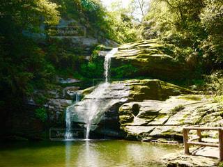 木々 に囲まれた滝の写真・画像素材[1491627]